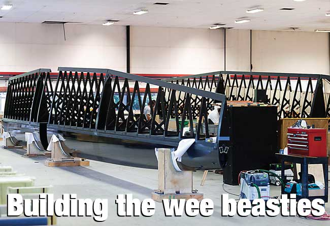 Building the wee beasties